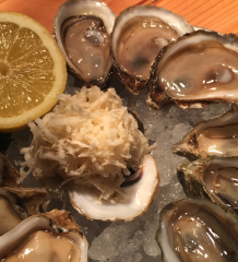 Plate of Oysters - Photo: Kendra Wingerter